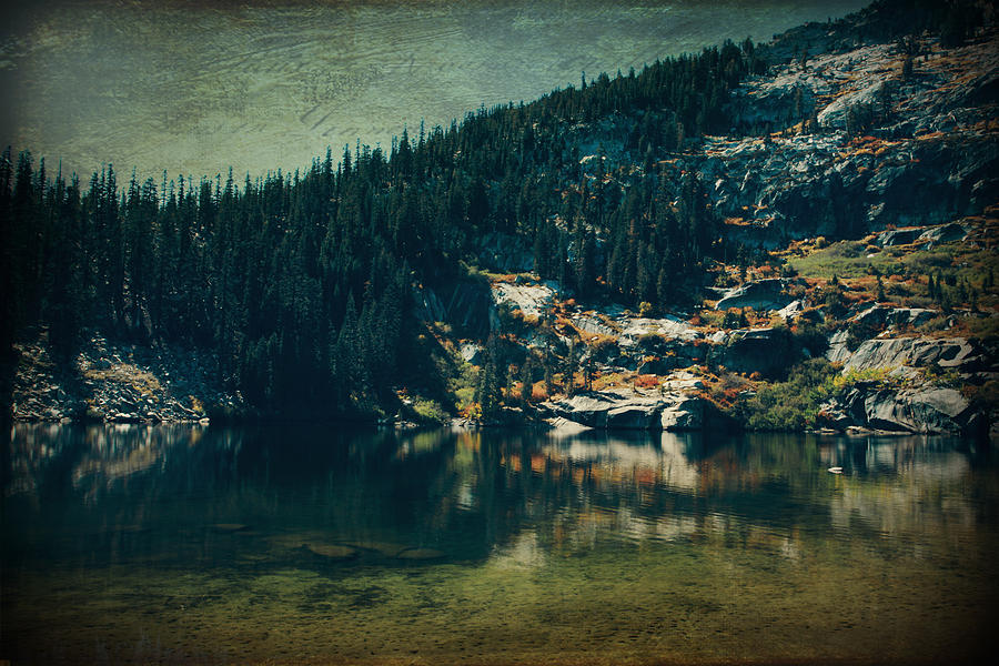 Upper Angora Lake Photograph - Dreams That Die by Laurie Search
