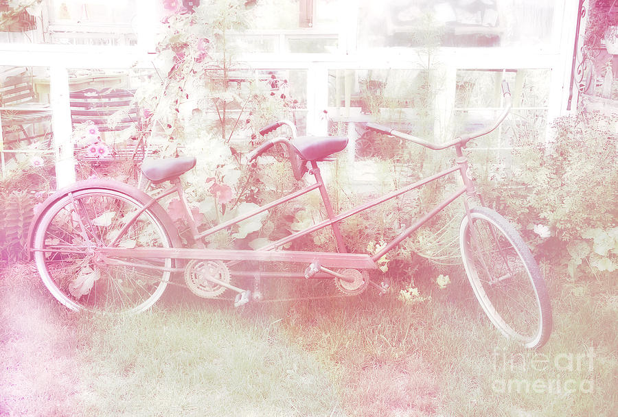 Dreamy Paris Pink Pastel Bicycle For Two Photograph By