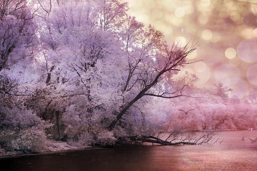 Dreamy Surreal Fantasy Pink Nature Lake Scene Photograph