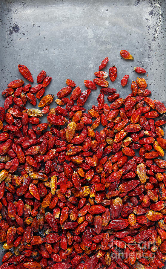 Asian Photograph - Dried Chili Peppers by Carlos Caetano