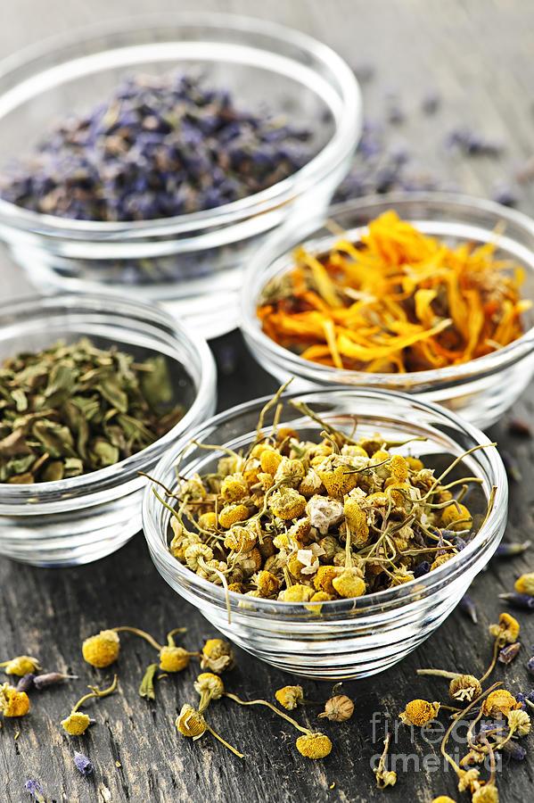Herbs Photograph - Dried Medicinal Herbs by Elena Elisseeva