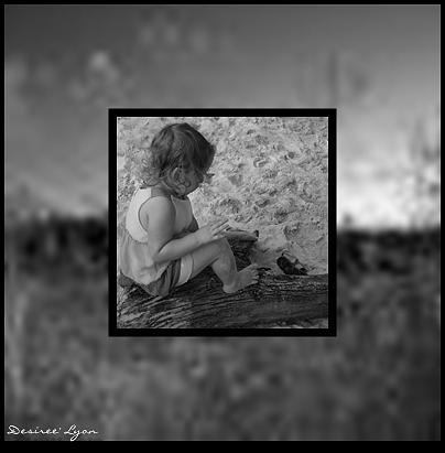 Kid Photograph - Driftwood by Desiree Lyon