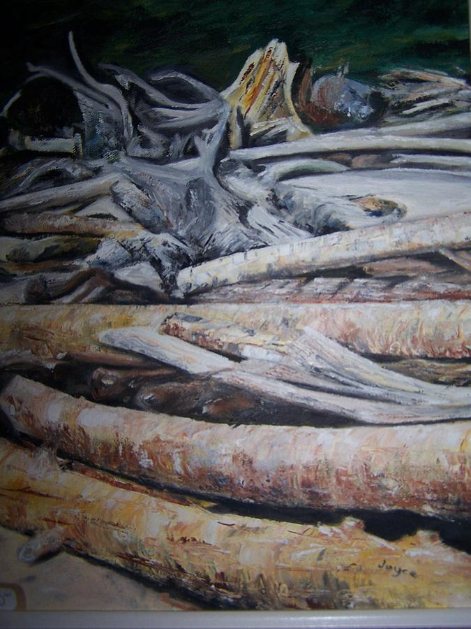 Driftwood Painting - Driftwood by Joyce Reid