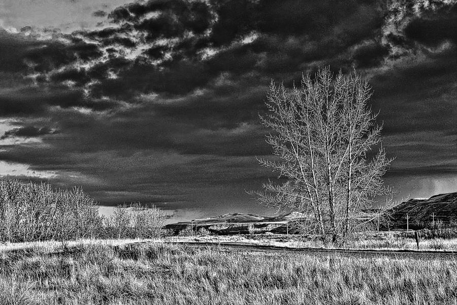 Black And White Photograph - Drumheller Valley In Black And White by Jim Justinick