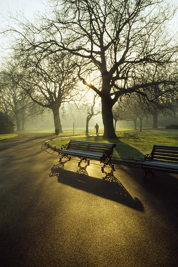 Autumn Photograph - Dublin - Parks, St. Stephens Green by The Irish Image Collection