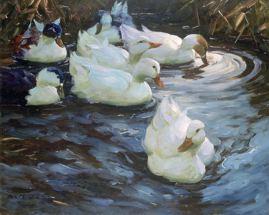 Horizontal Photograph - Ducks On A Pond by Photos.com