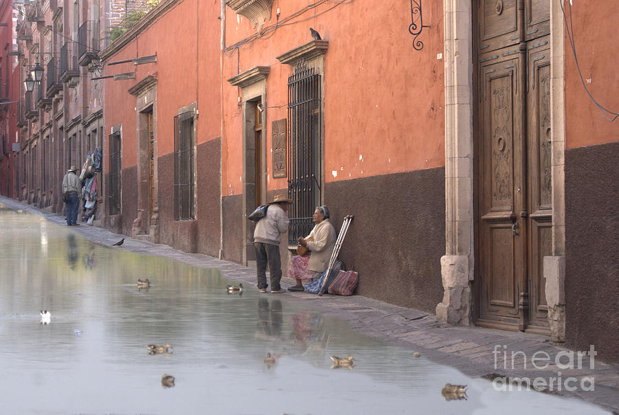 Ducks Digital Art - Ducks Swimming On Calle Reloje by John  Kolenberg