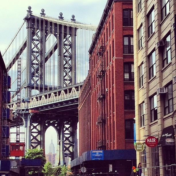 Summer Photograph - Dumbo by Randy Lemoine