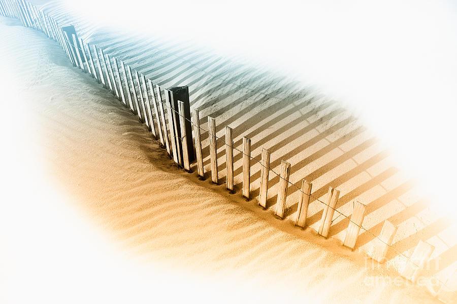 Dune Fence by Dan Carmichael