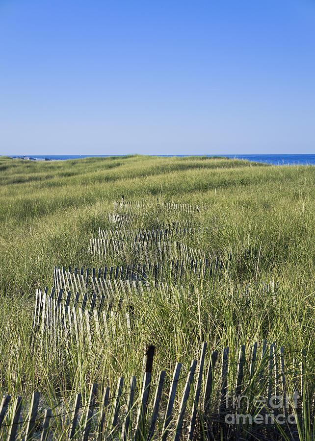 New England Photograph - Dune Fence by John Greim