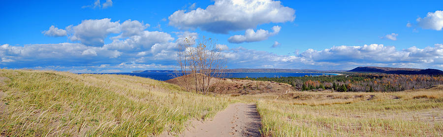 Bear Photograph - Dune Path to Glen Arbor by Twenty Two North Photography