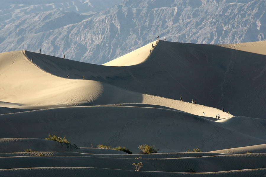 Walkers Photograph - Dune Walkers by Wes and Dotty Weber