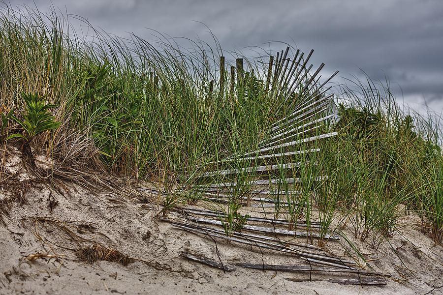 East Hampton Photograph - Dunes by Rick Berk