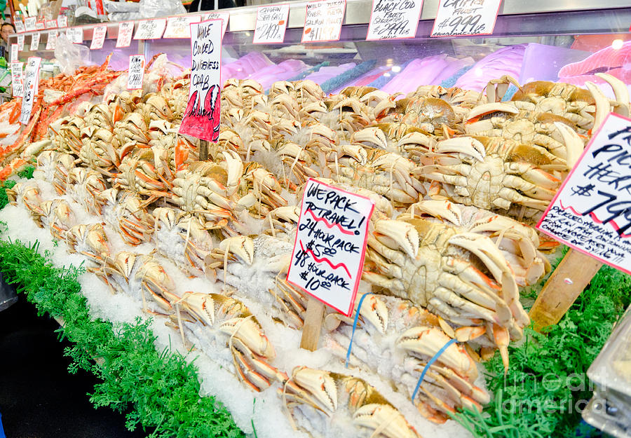 Dungeness Crab Whole Cooked Crab Pikes Place Public Market Seattle Photograph