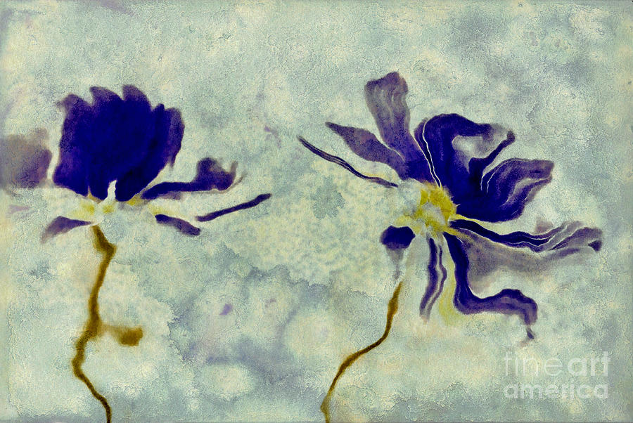 Daisies Digital Art - Duo Daisies by Variance Collections