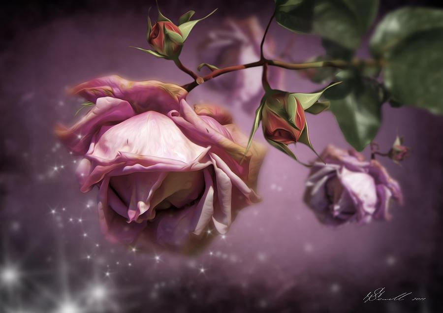 Anniversary Digital Art - Dusky Pink Roses by Svetlana Sewell