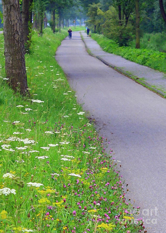 Dutch Bicycle Path Photograph - Dutch Bicycle Path - Digital Painting by Carol Groenen