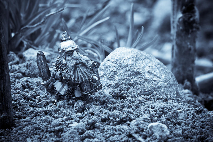 Fantasy Photograph - Dwarf Lost In The Enchanted Forest by Marc Garrido