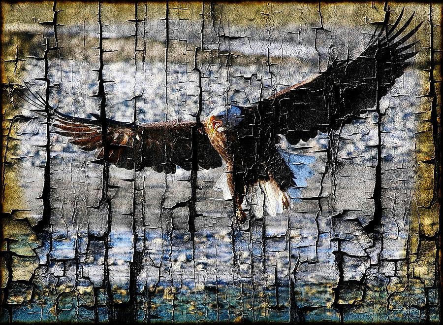Bald Eagle Digital Art - Eagle Imprint by Carrie OBrien Sibley
