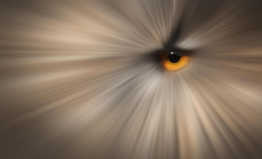 Eye Photograph - Eagle Owl Eye Abstract by Andy Astbury