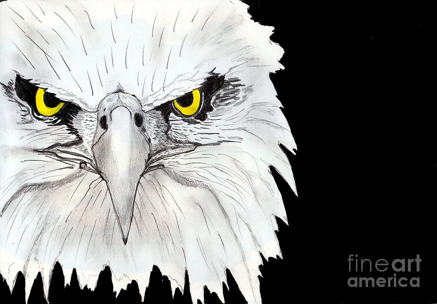 Landscape Painting - Eagle by Shashi Kumar