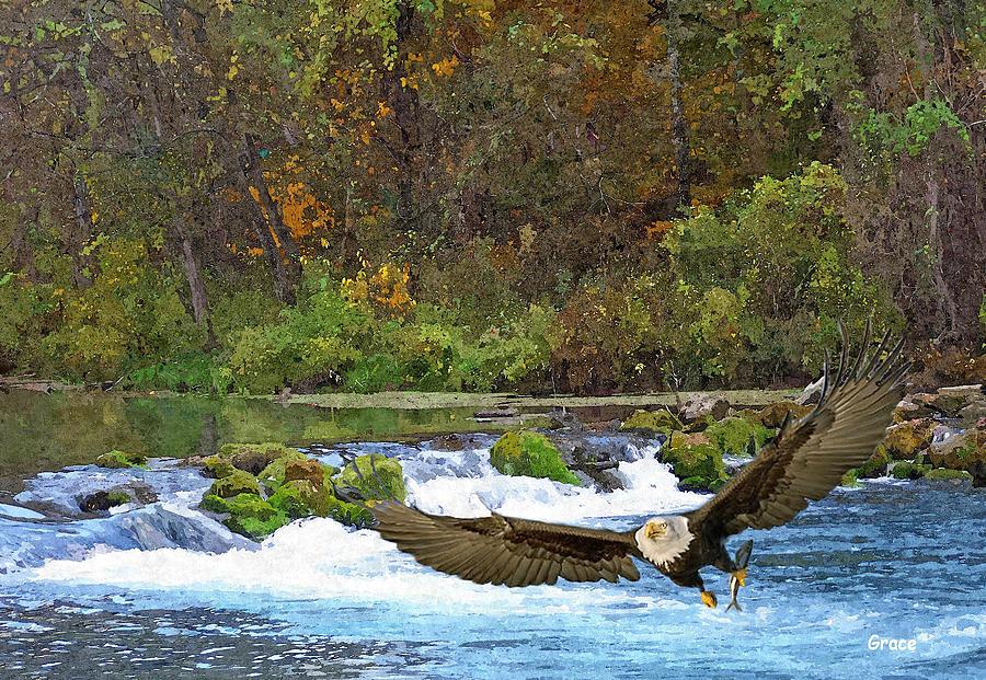 Waterscape Photograph - Eagle Snatch by Julie Grace