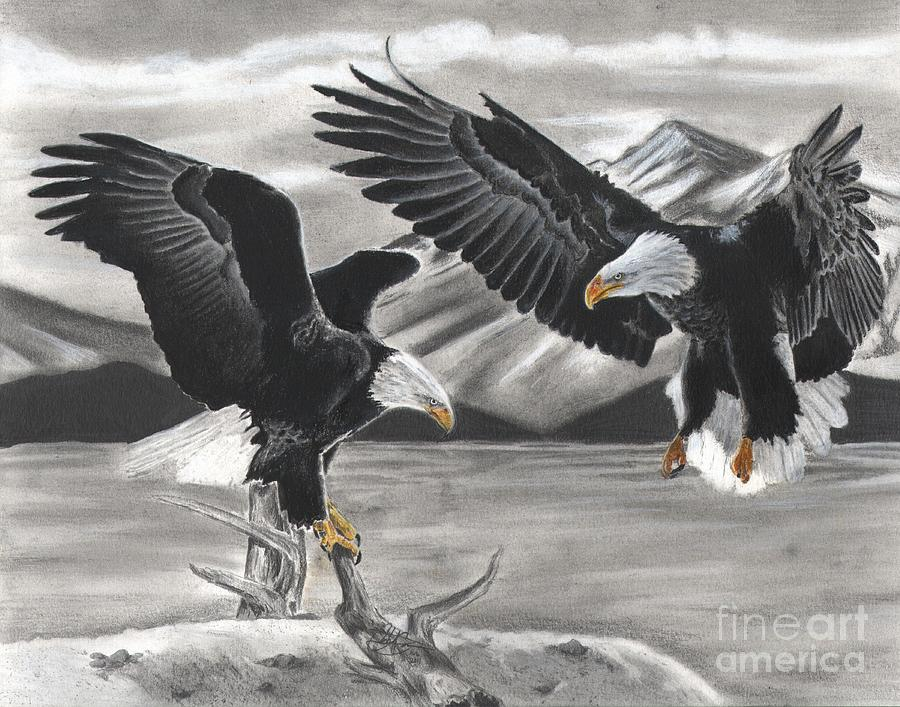 Eagle Drawing - Eagles by Christian Conner