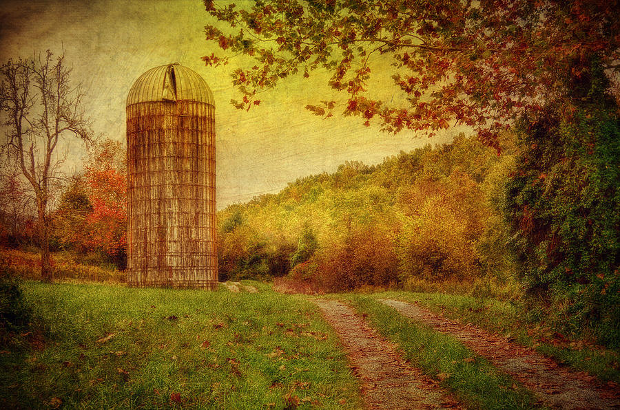 Silo Photograph - Early Autumn by Kathy Jennings