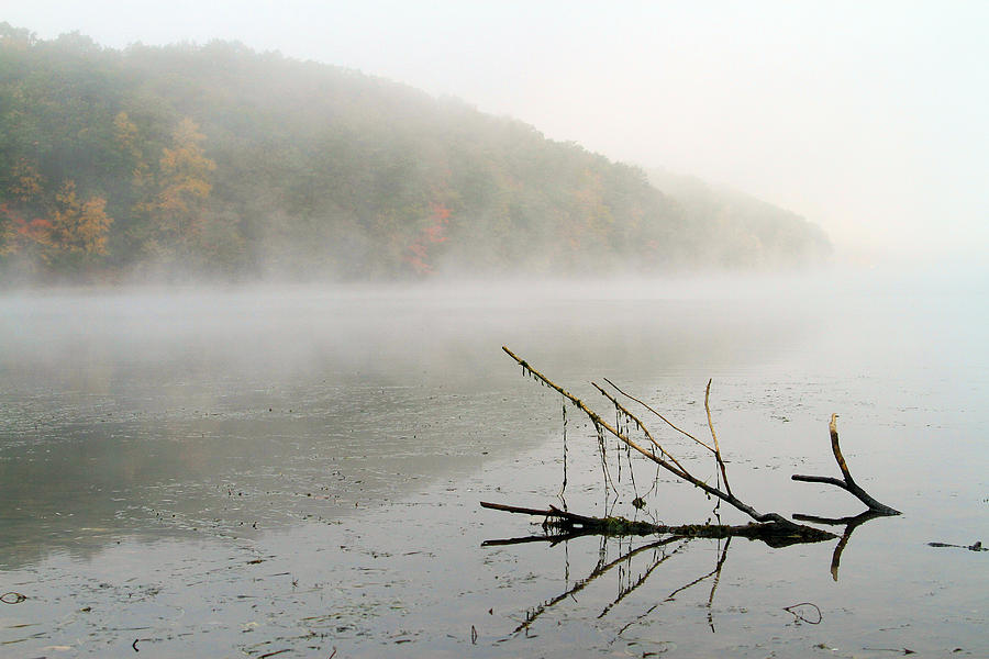 Fog Photograph - Early Autumn Morn by Karol Livote