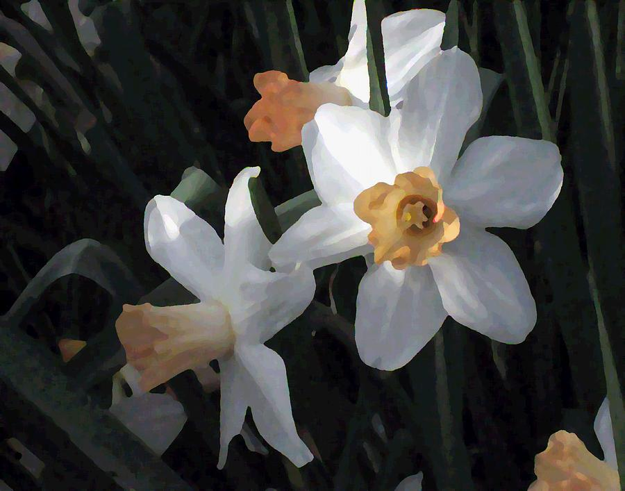 Early Jonquils by Sherry Oliver