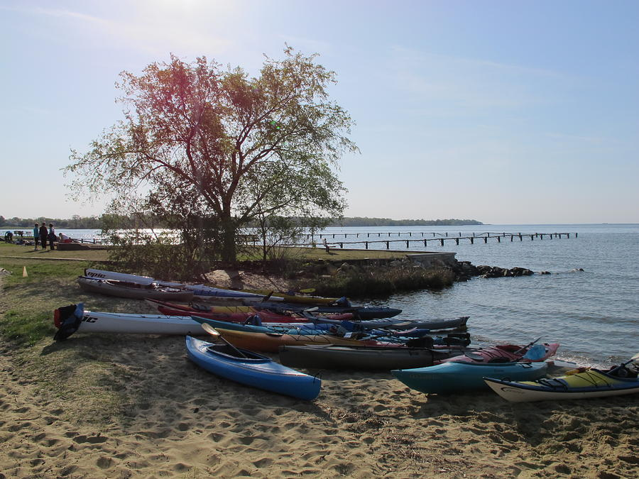 Canoes Photograph - Early Morning Canoes by Valia Bradshaw
