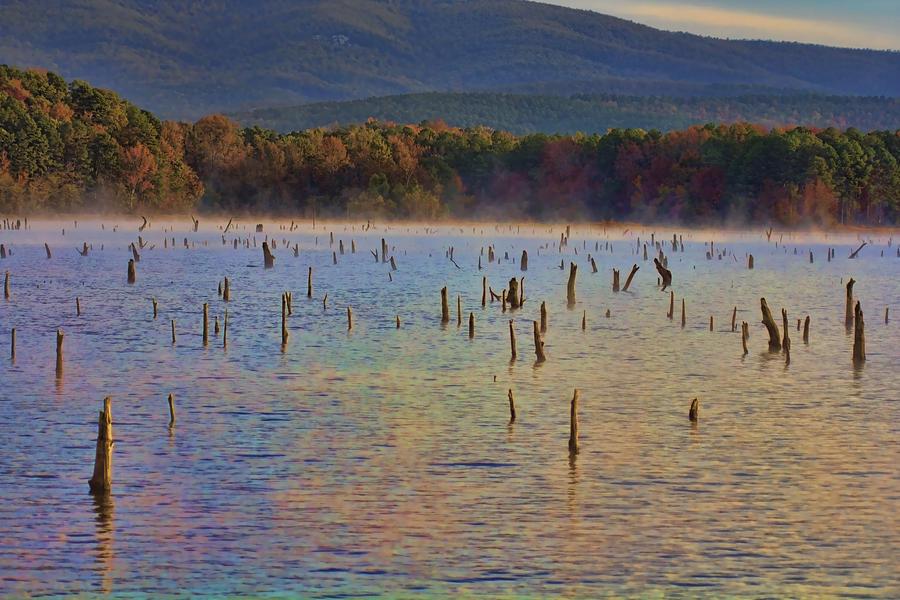 Lake Wilhelmina Photograph - Early Morning Color Of Lake Wilhelmina-arkansas by Douglas Barnard