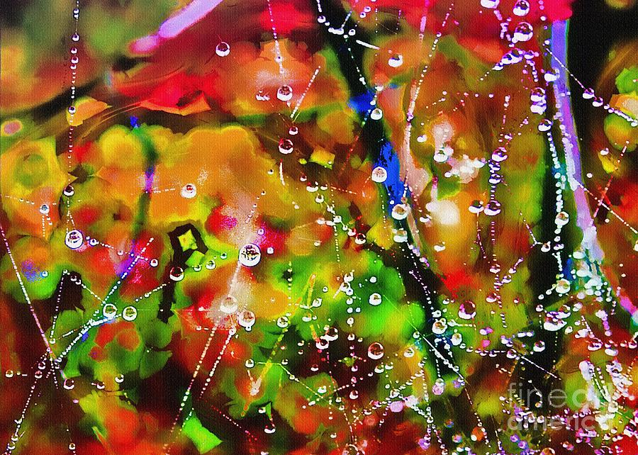 Dew Photograph - Early Morning Dew by Judi Bagwell