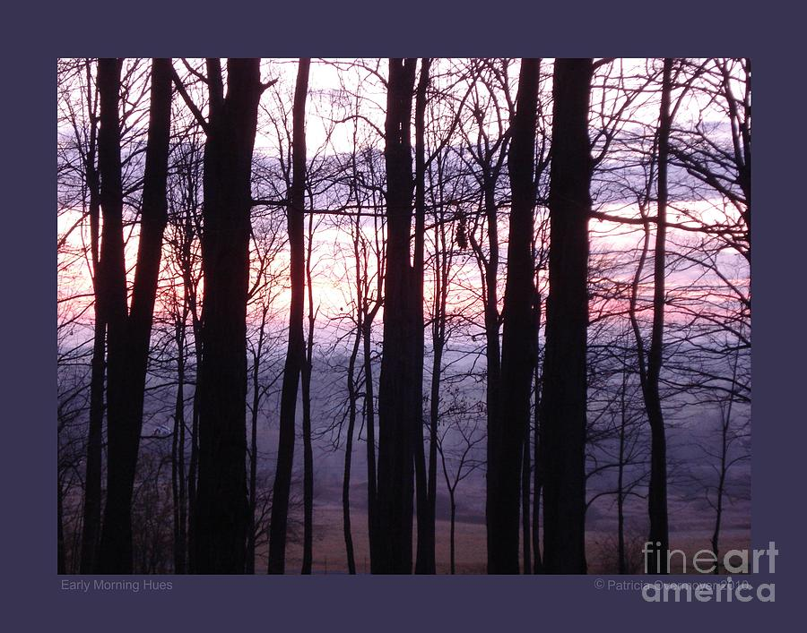 Landscape Photograph - Early Morning Hues by Patricia Overmoyer