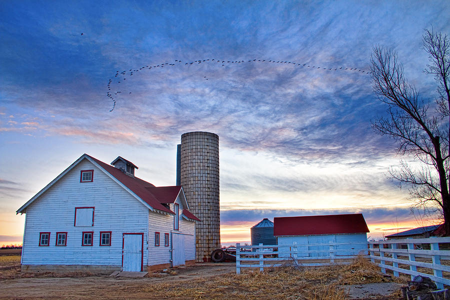 Barns Photograph - Early Morning On The Farm by James BO  Insogna