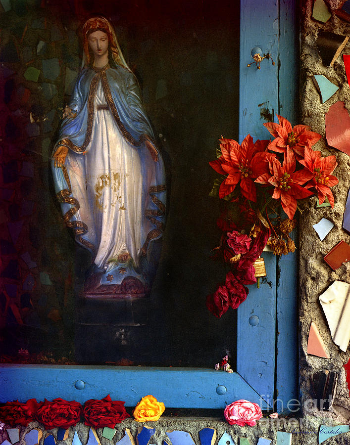 Cut Flowers Photograph - East La Mary by Lawrence Costales
