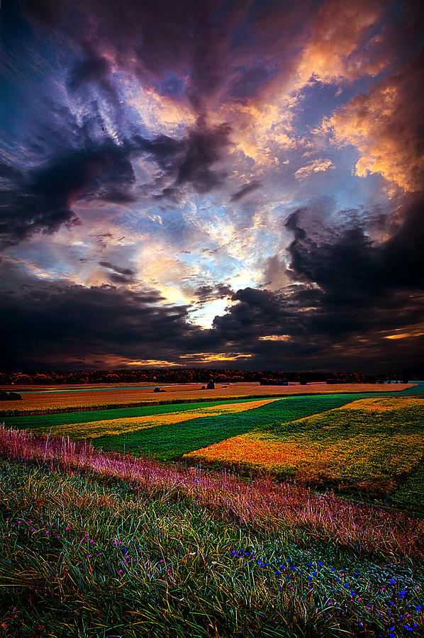 Horizons Photograph - Echos Of Life by Phil Koch