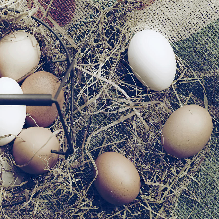 Eggs Photograph - Eggs by Joana Kruse