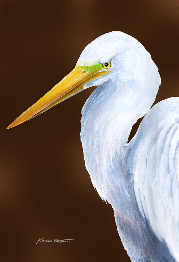 Egret Painting - Egret Head Study by Kevin Brant