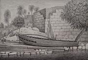 Landscape Drawing - Egypt Beauty by Usama Nashed