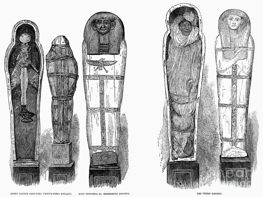 1881 Photograph - Egypt: Royal Mummies, 1882 by Granger