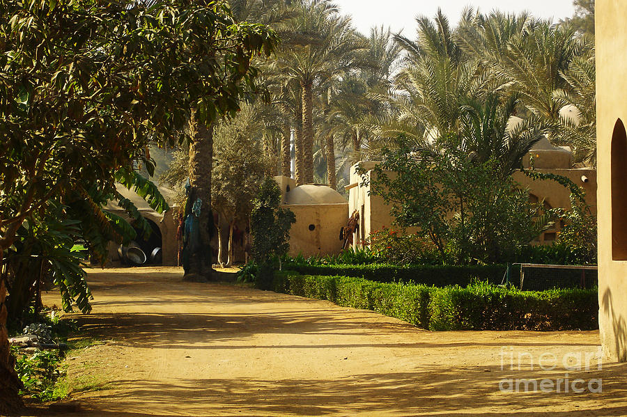 Late Photograph - Egyptian Courtyard In The Late Afternoon by Mary Machare