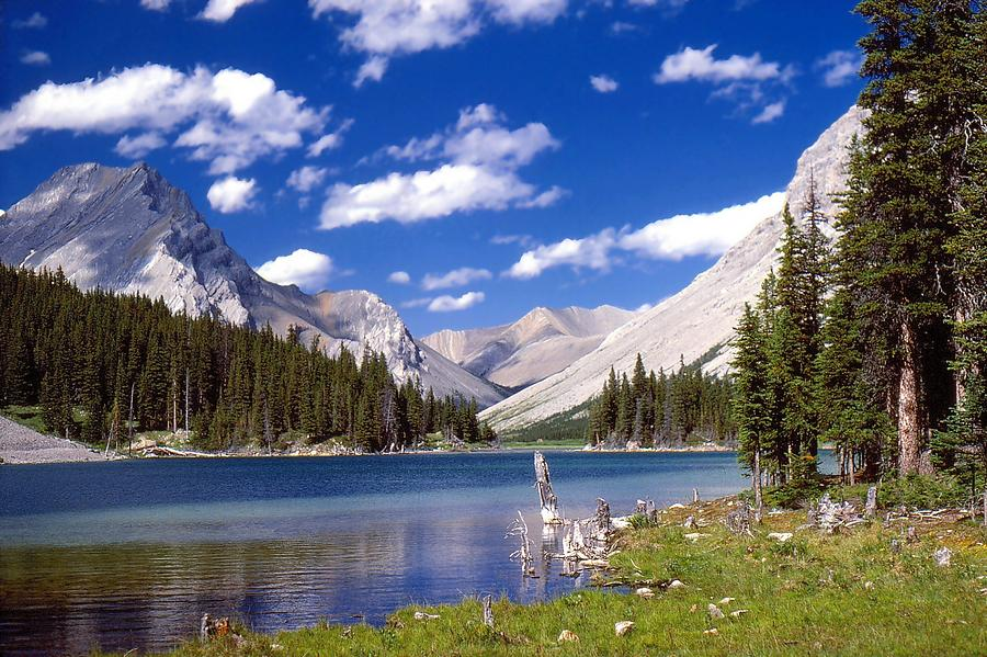 Mountain Lake Photograph - Elbow Lake by Jim Sauchyn