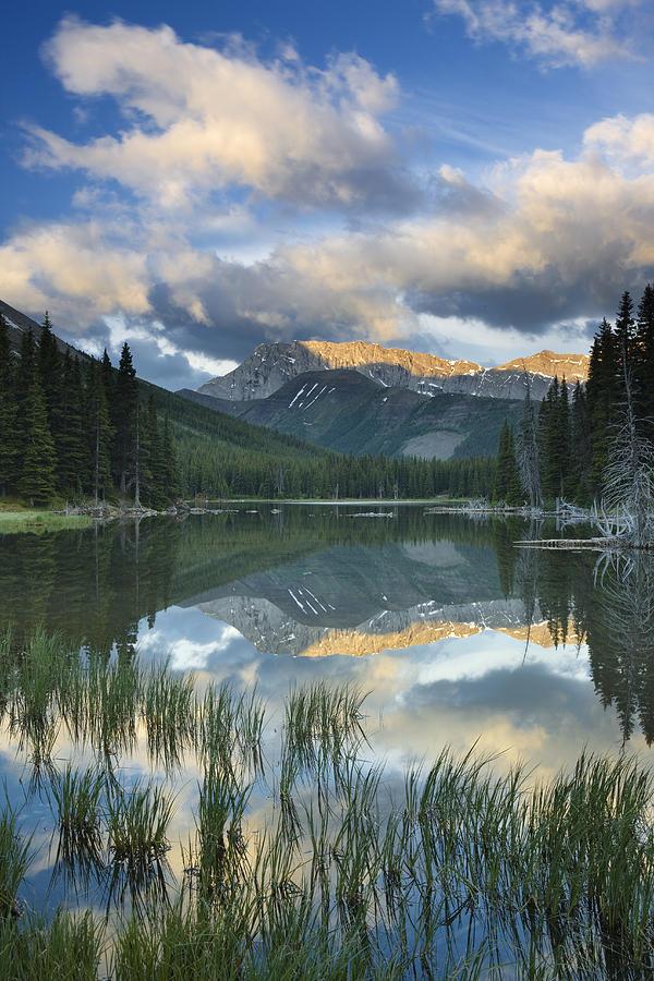 Elbow Lake Kananaskis Country Alberta Photograph By