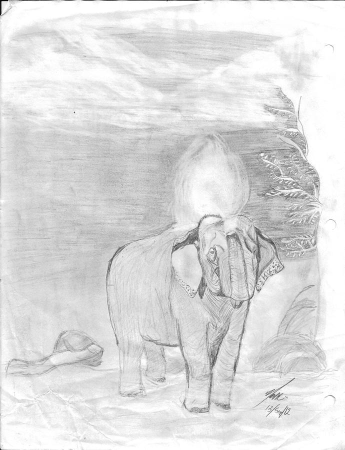 Elefante En Su Ducha Drawing by Alejandra Romano