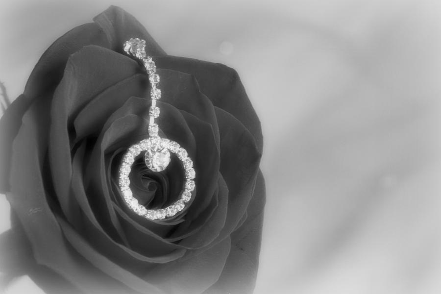Rose Photograph - Elegance In Black And White by Mark J Seefeldt