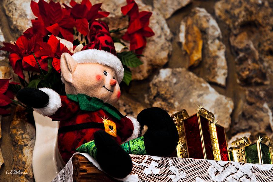 Christmas Photograph - Elf On Shelf by Christopher Holmes
