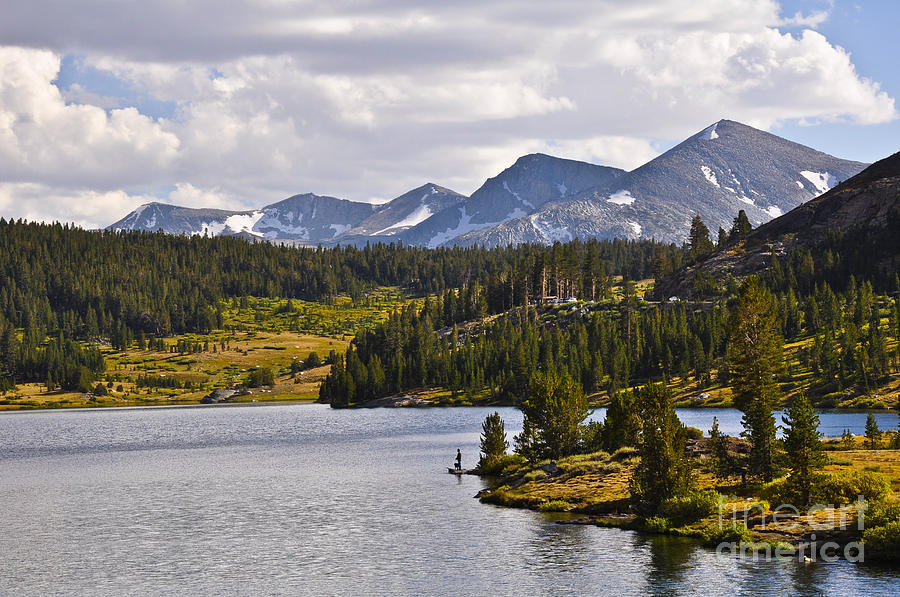 Landscape Photograph - Ellery Lake by Camille Lyver