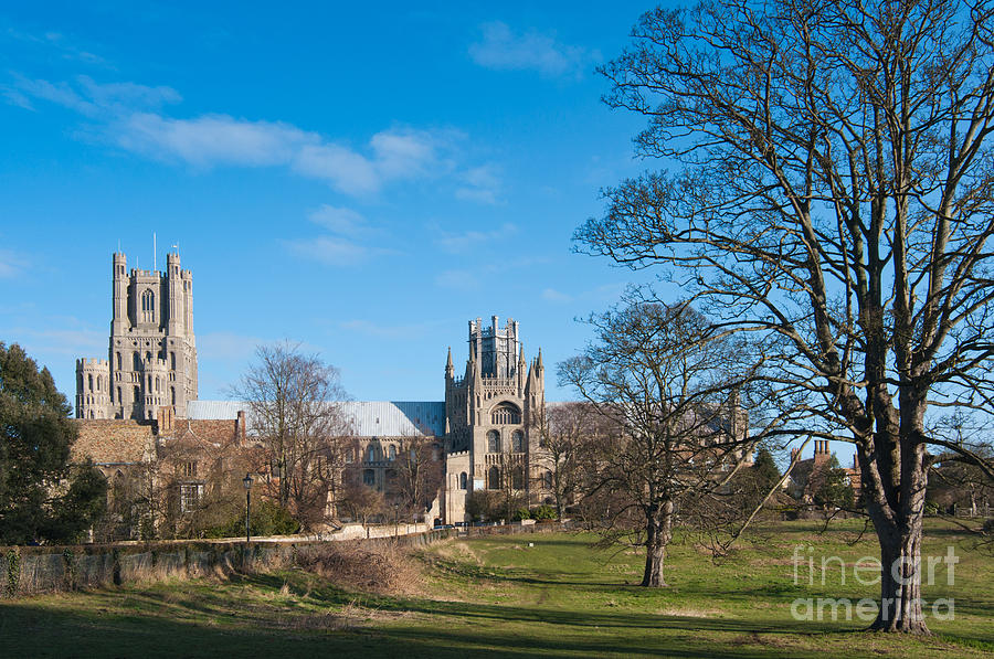 Anglia Photograph - Ely Scenic by Andrew  Michael
