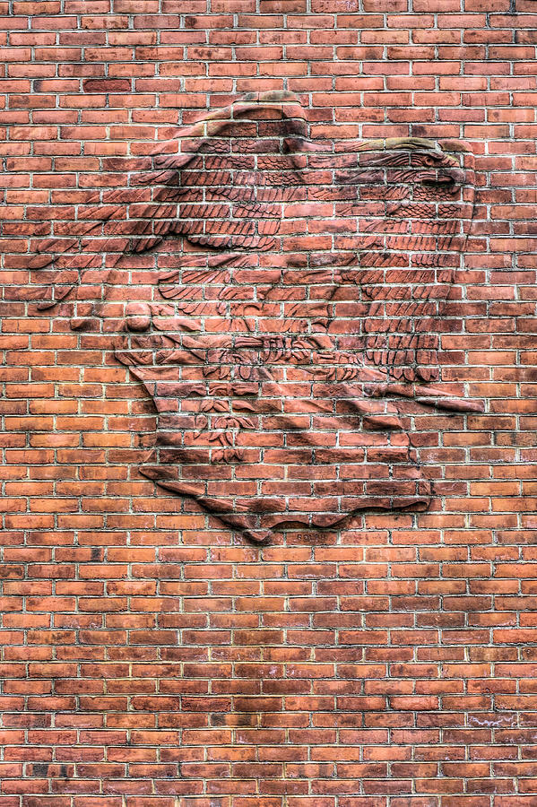 The Wall Photograph - Embedded Eagle by JC Findley